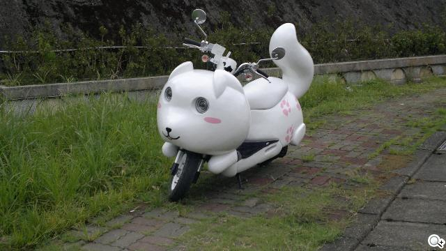 N8 拍攝 可愛 小狐狸 機車! - SOGI 手機王